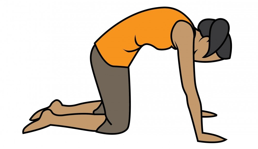 Person performing cat yoga exercises back pain