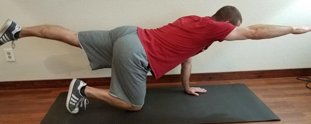 Bird dog - exercises that help posture