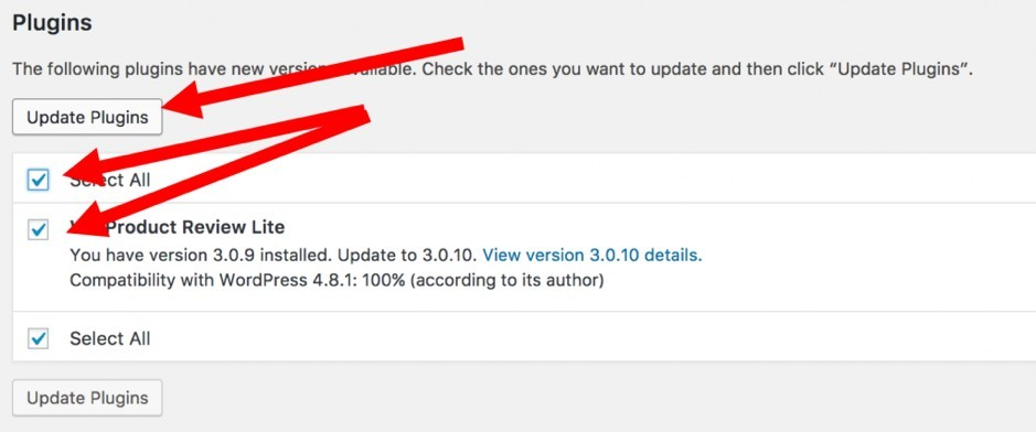 How to Update a WordPress Plugin 3