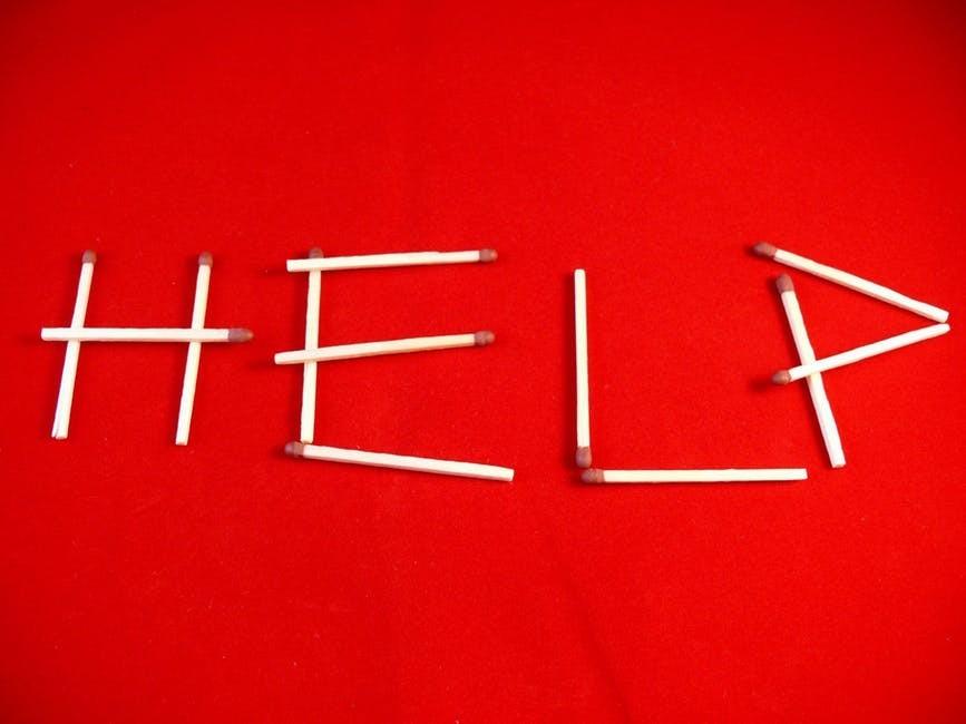 Get Expert Help & Support