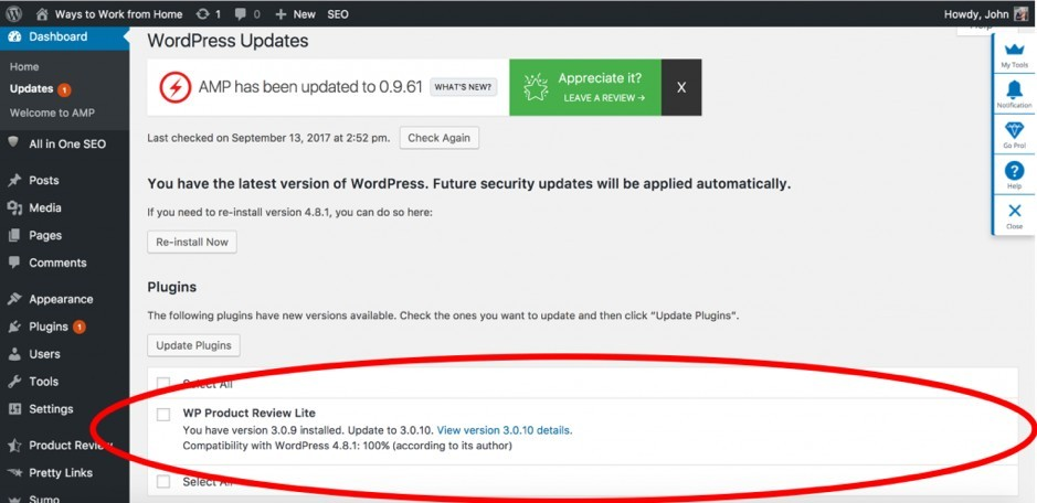 How to Update a WordPress Plugin 2