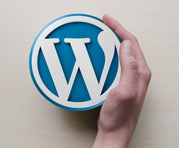 Get Used to WordPress