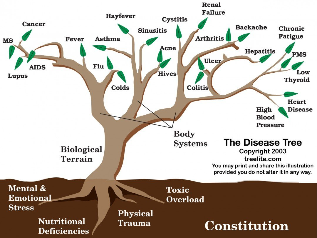 How to Know the Root of Your Disease