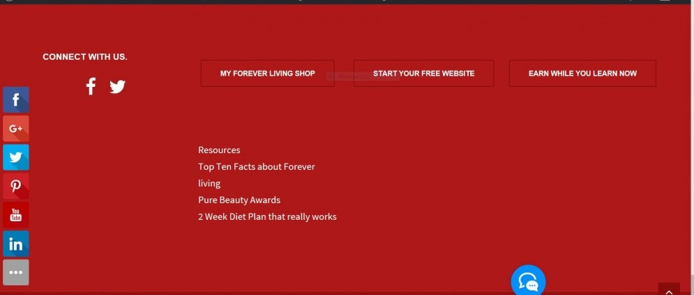 screen shot of the footer. In own your own business online.