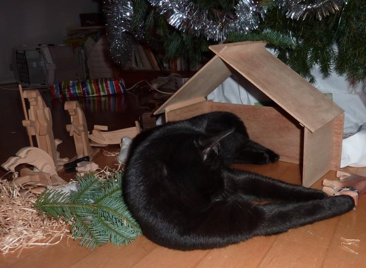 Migo Christmas Stable