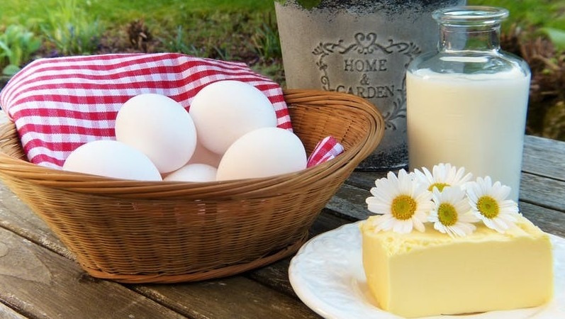 egg and dairy