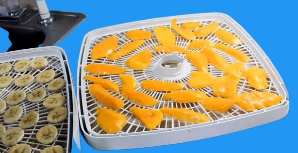 fruits on dehydrator rack