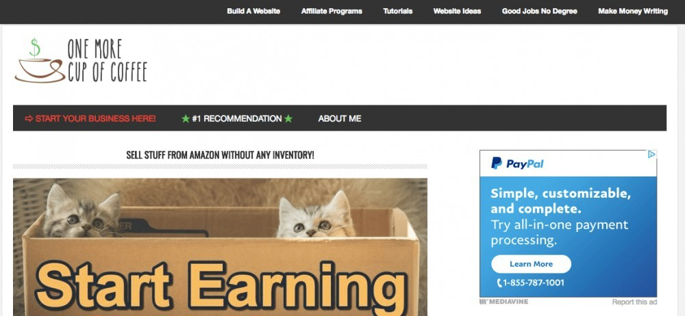 Example #4 of a Successful Affiliate Marketing website
