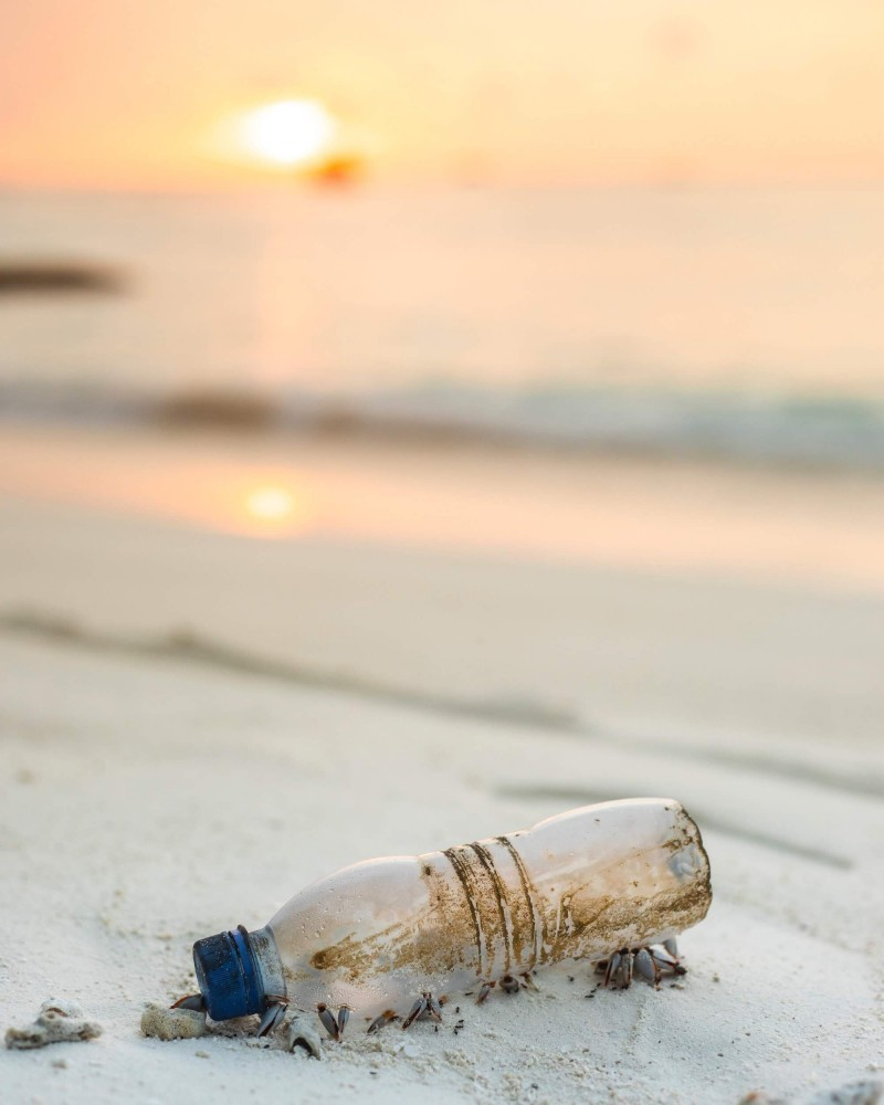 Bottle on a Beach Prompt