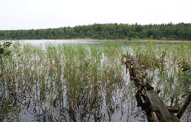 Lake Karwowo