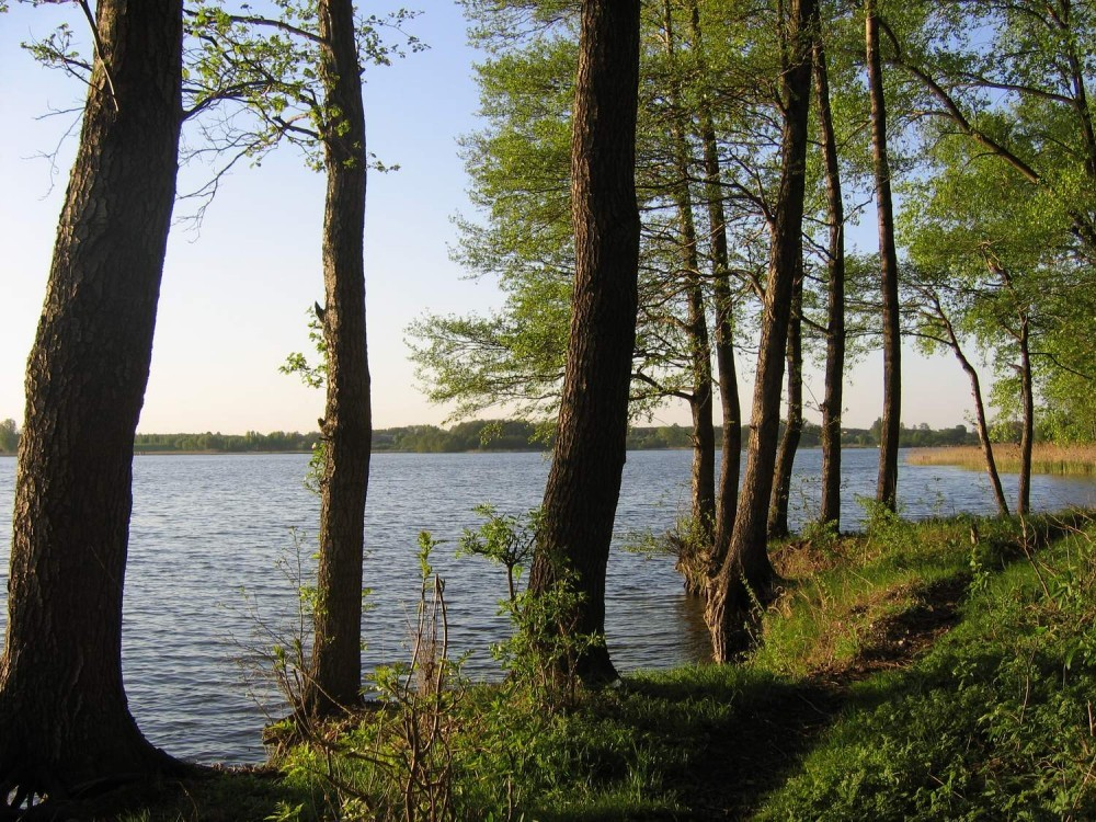 Slupca Lake