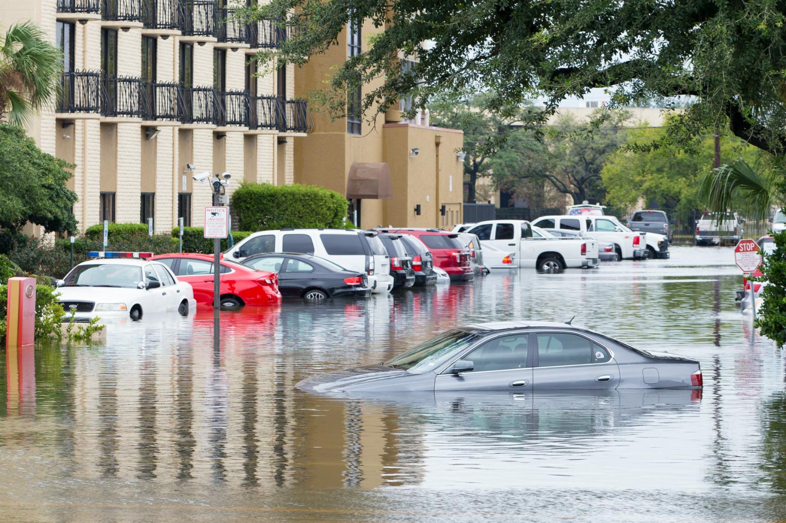 Flood-Damaged Vehicle