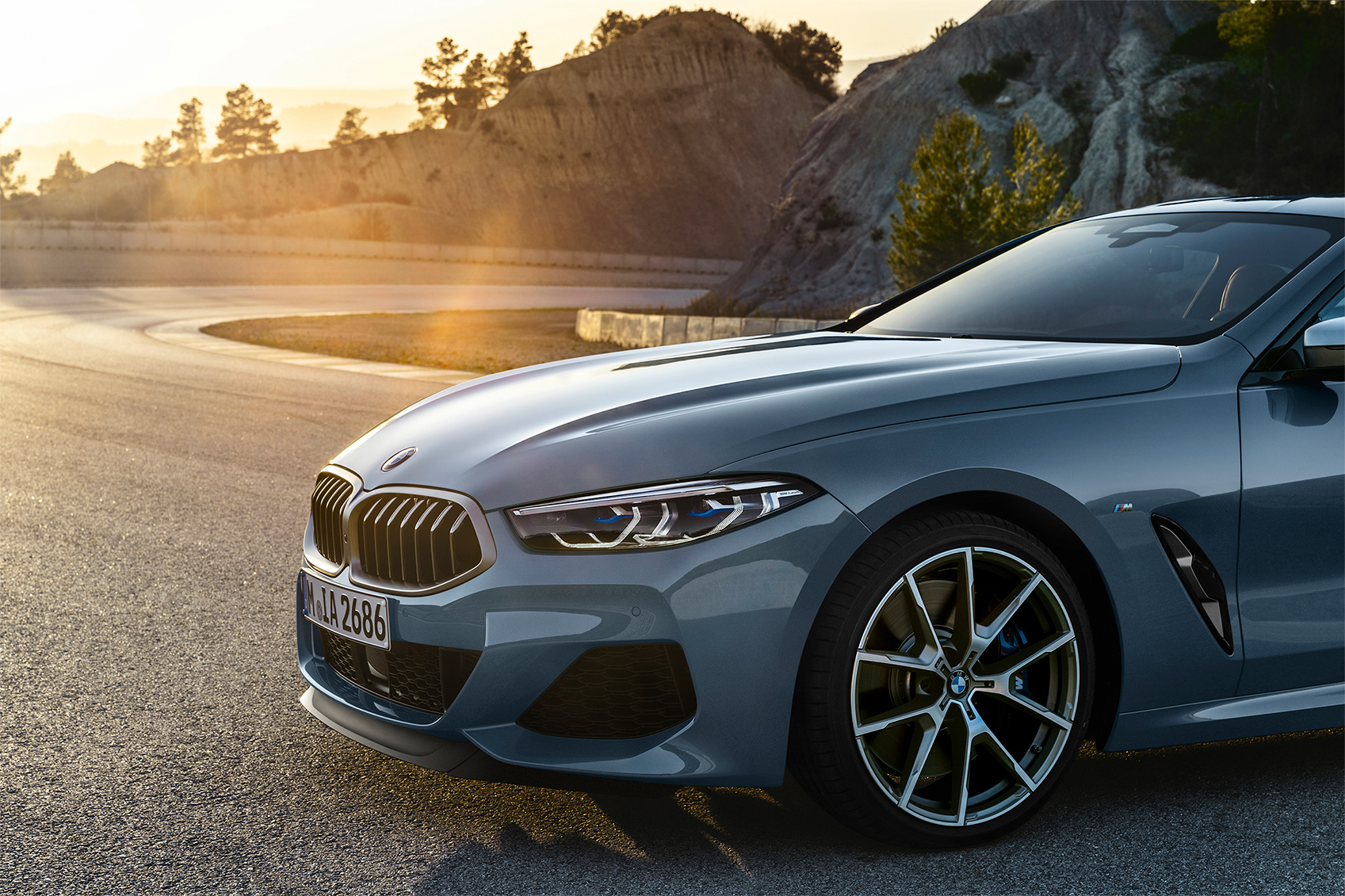 TrackWorthy - 2019 BMW M850i xDrive Coupe (10)