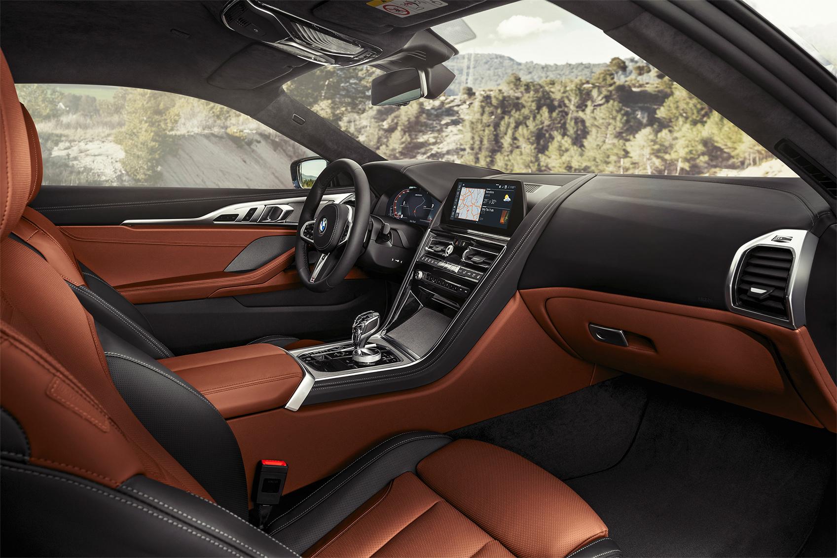 TrackWorthy - 2019 BMW M850i xDrive Coupe (15)