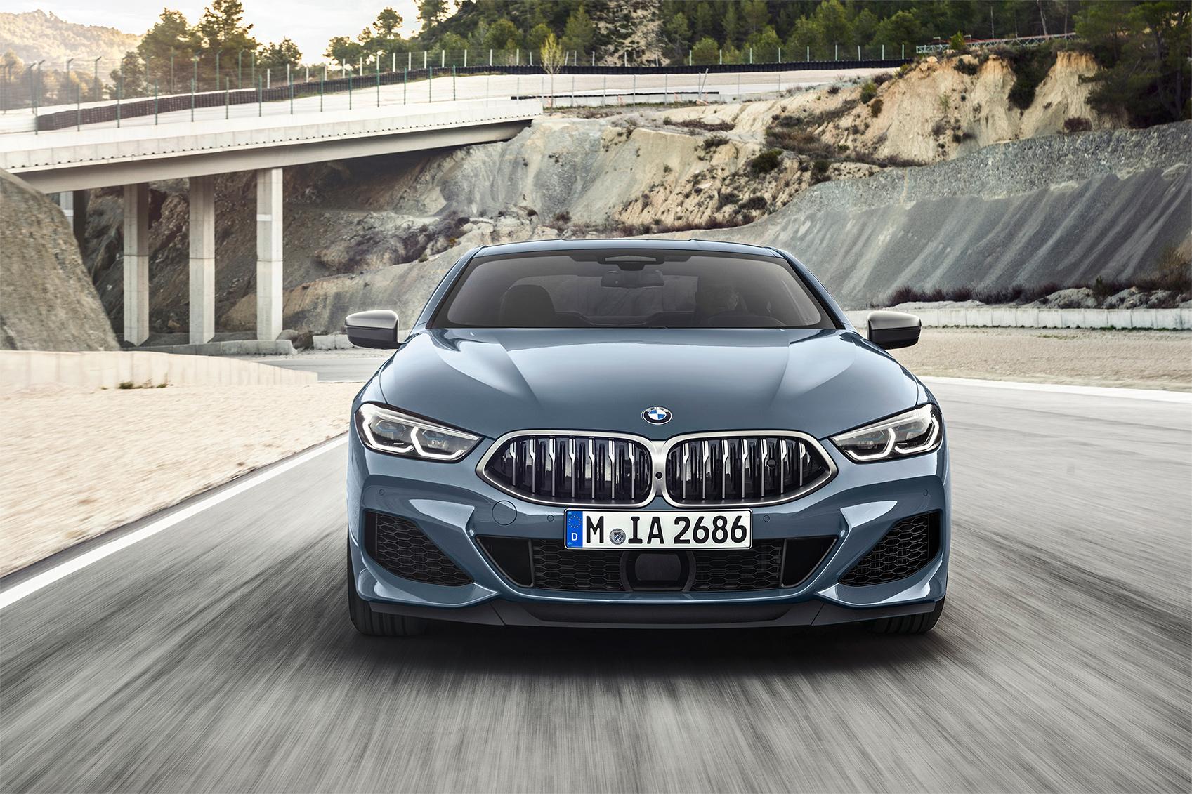TrackWorthy - 2019 BMW M850i xDrive Coupe (16)