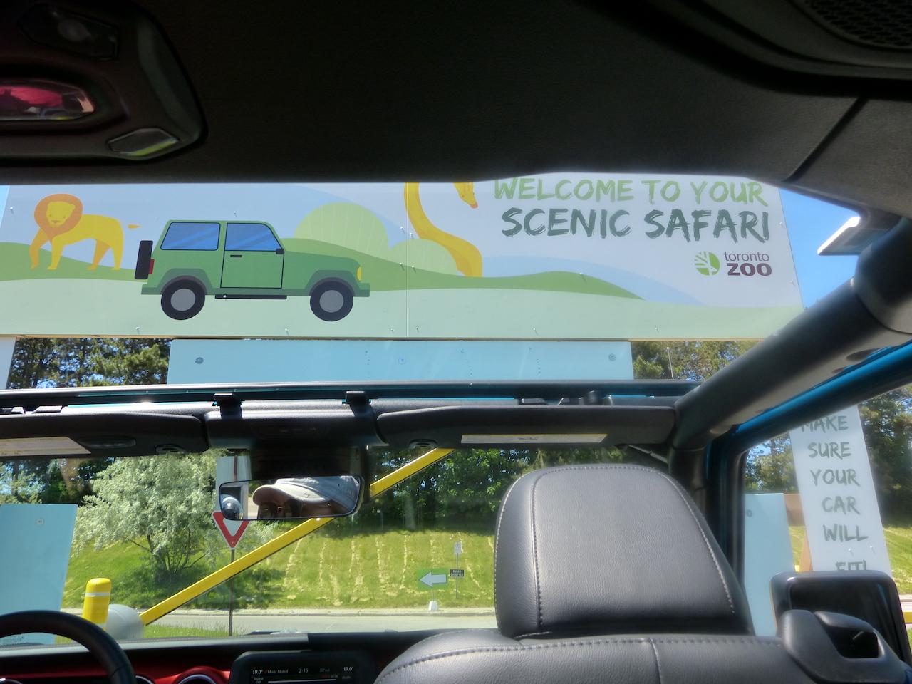 Scenic Safari
