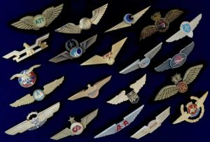 Wing Collector