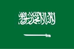 Saudi Arabia Population 2019 (Demographics, Maps, Graphs)