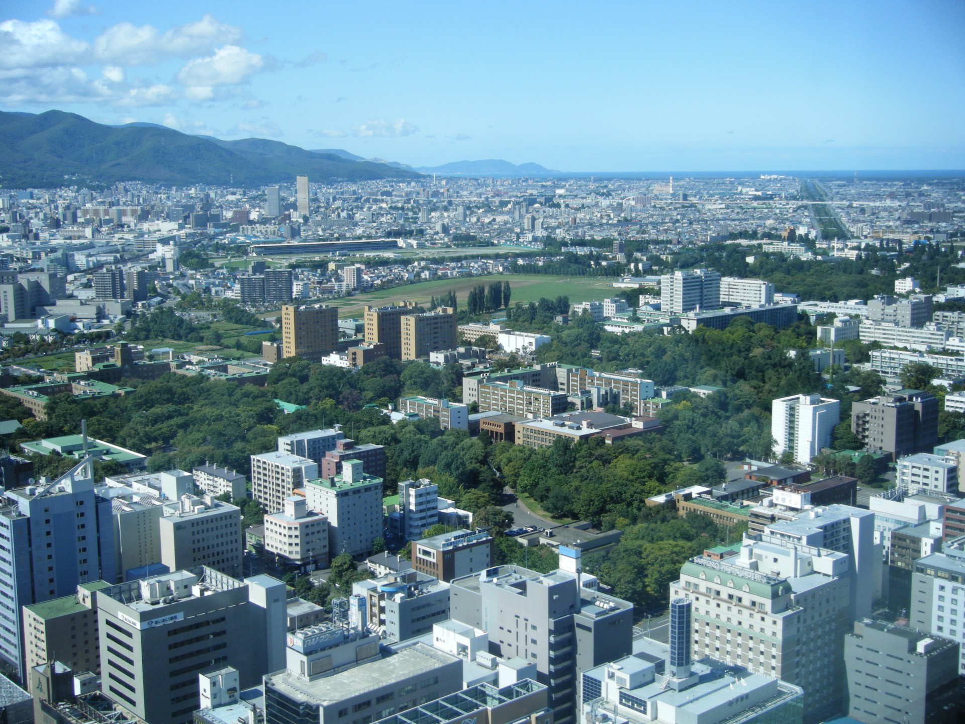 Hatogaya-honcho City