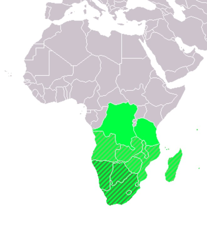 Southern Africa Population in 2018