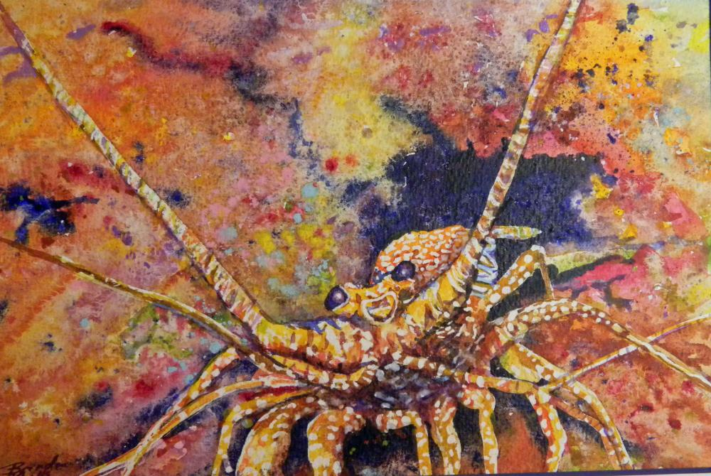 Lobster-surprise   Brenda's Artwork