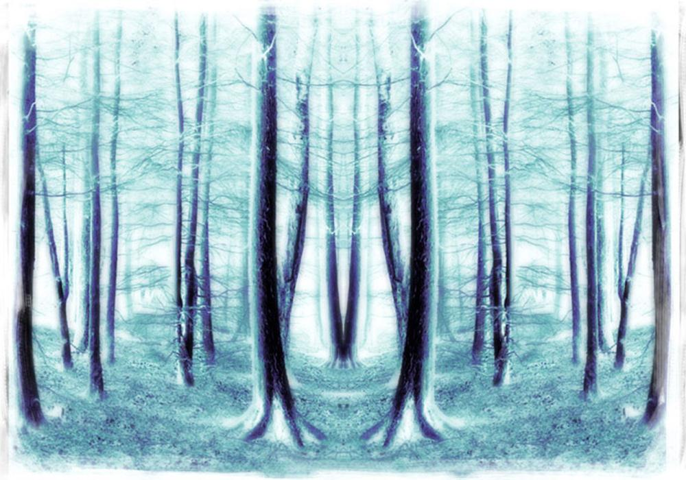 Double vision | Val's fine art