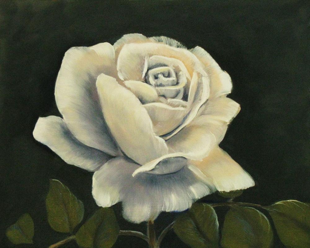 Rose, white |