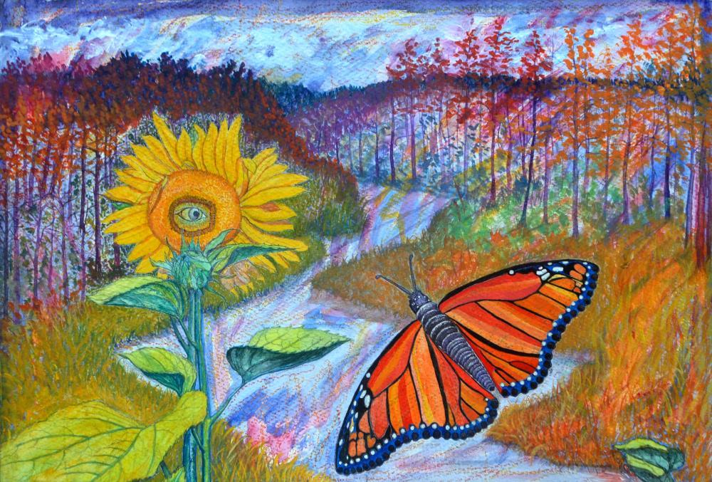 Monarch Butterfly | JOHNPOWELLPAINTINGS