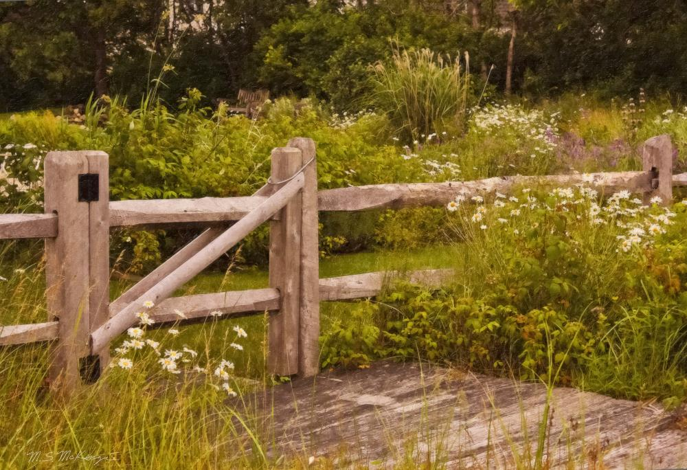 fence-and-flowers-fixed |