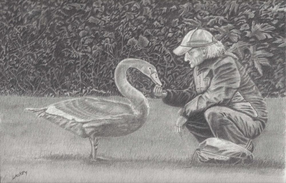 Swan Whisperer Dublin Ire... | Johnny's Artwork