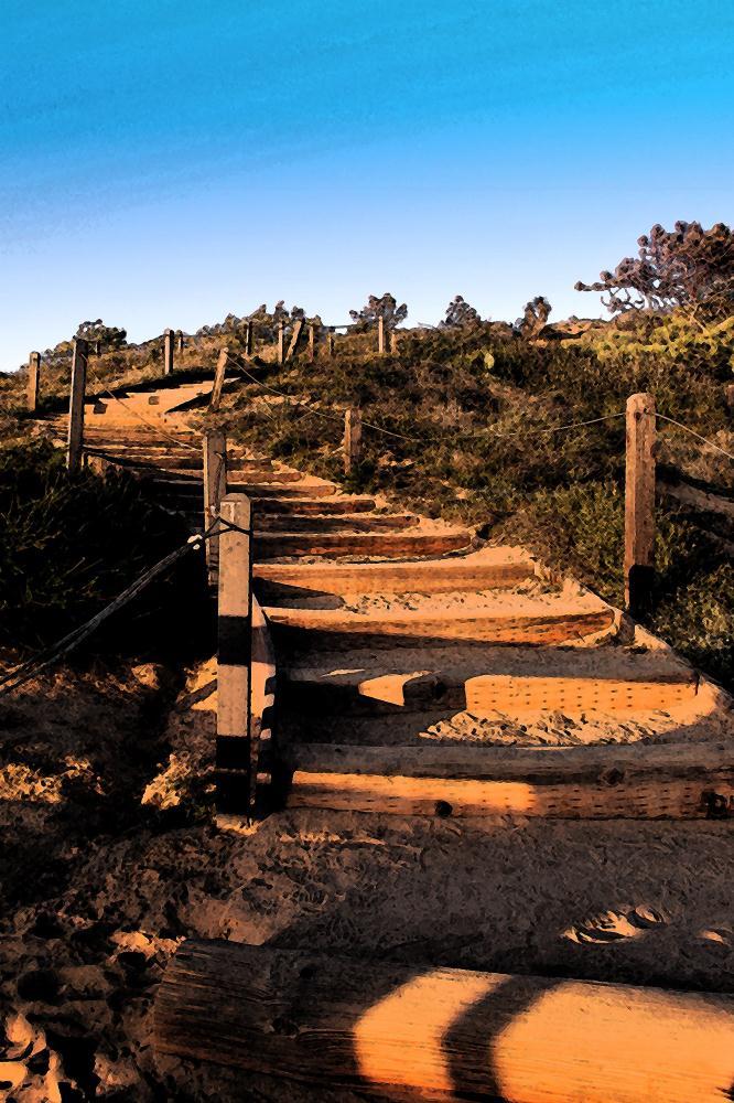 Trail Steps | Photos by Pinta
