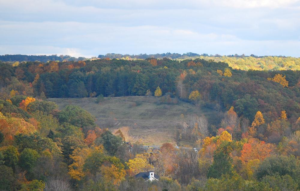 Autumnal Foilage | Photos by Pinta