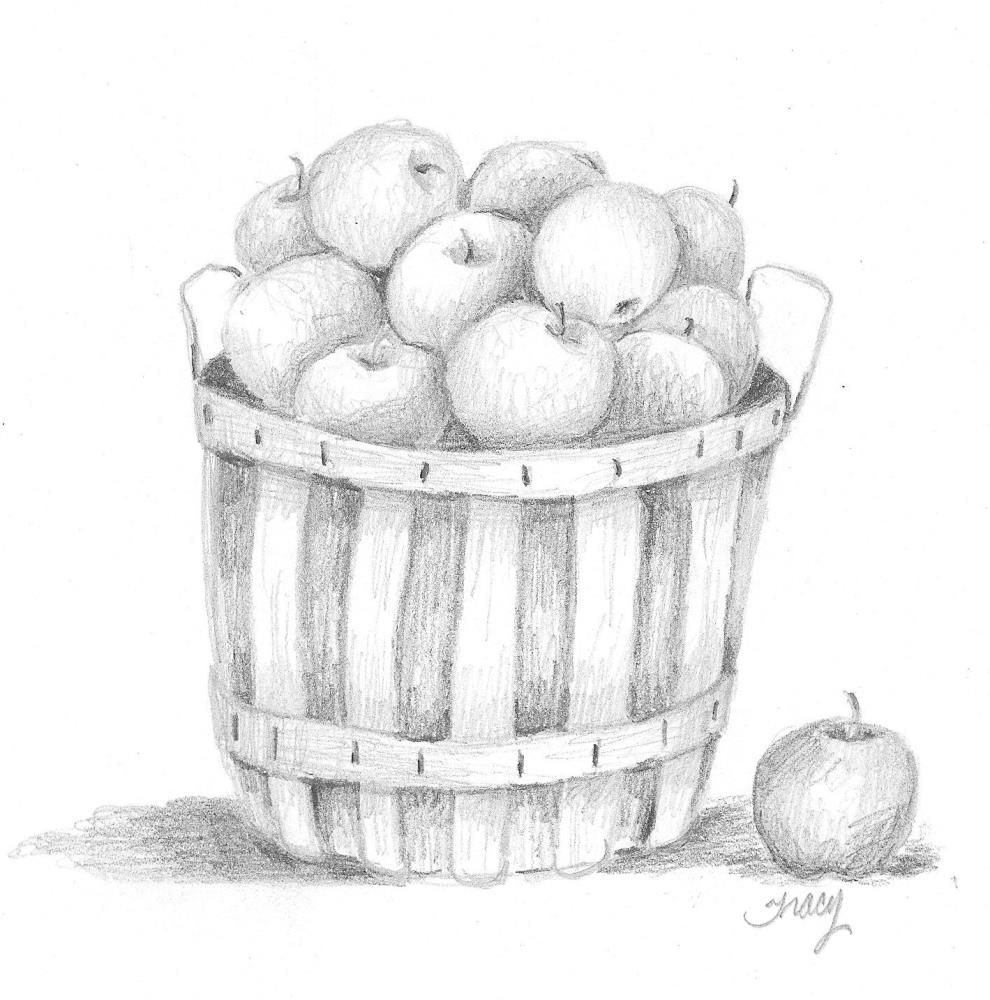 Applebasket | Tracy's Artwork