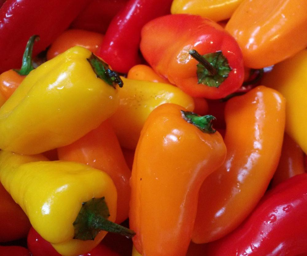 Peppers  | Bootlegger Creations