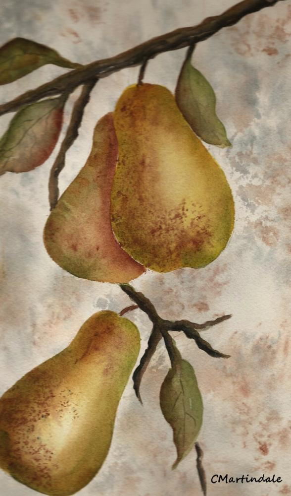 Golden Pears | Serendipity Art