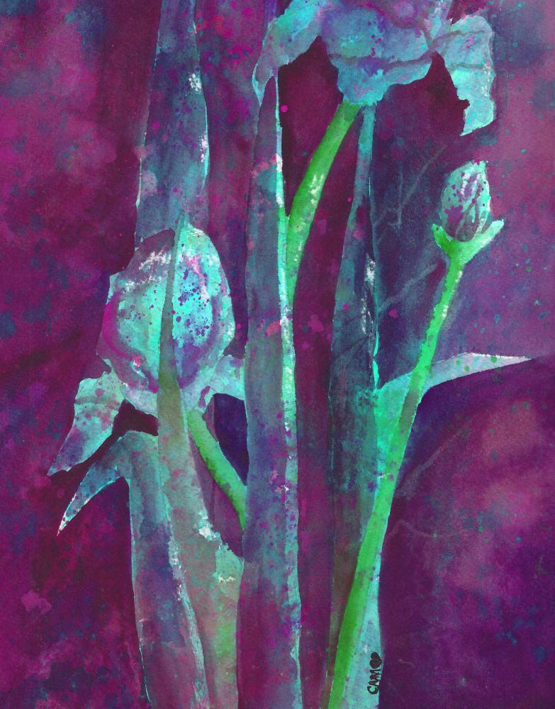 Midnight Iris III | Serendipity Art