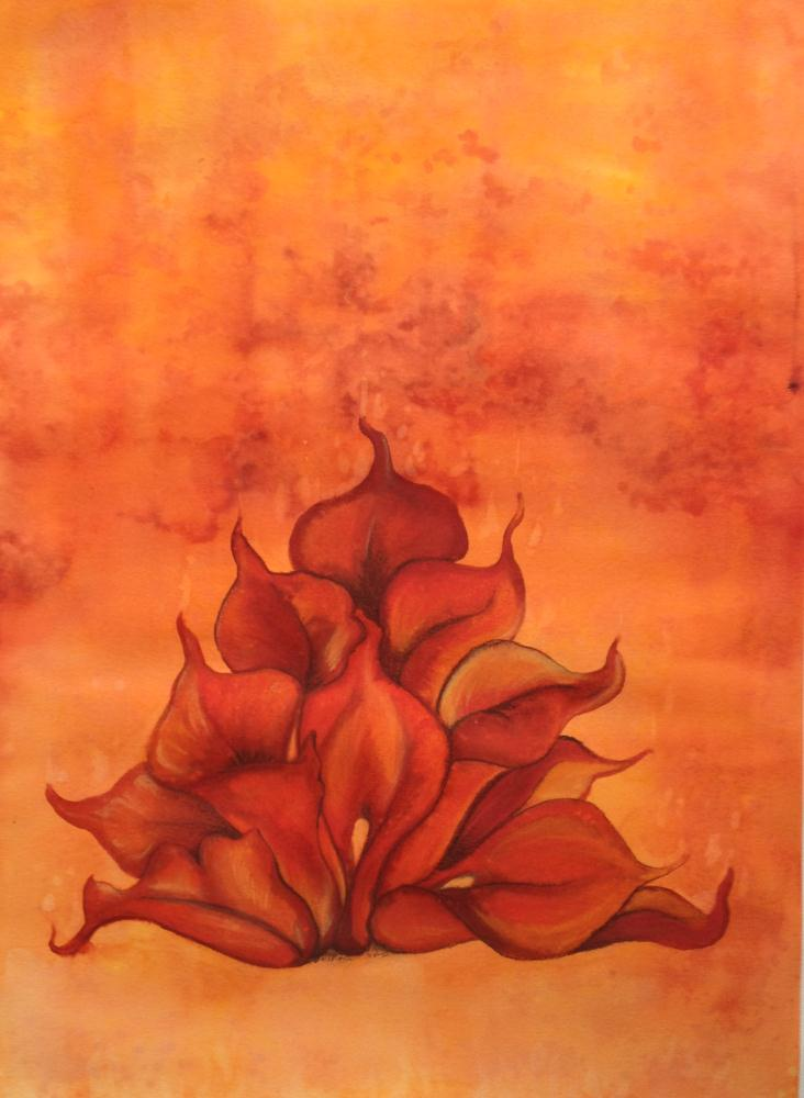 Calla lily flames | Kathleen Fiorito Art