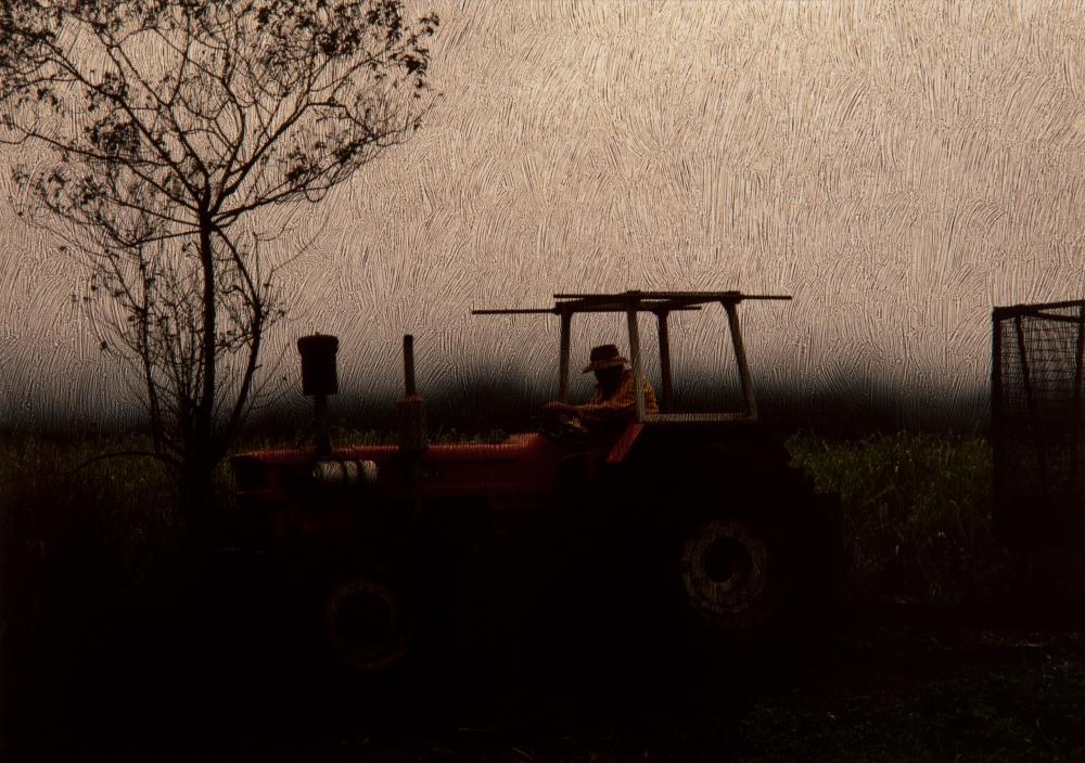 Etched Sugar Cane Farmer,... | K DucoteSchimmel Art & Ph...