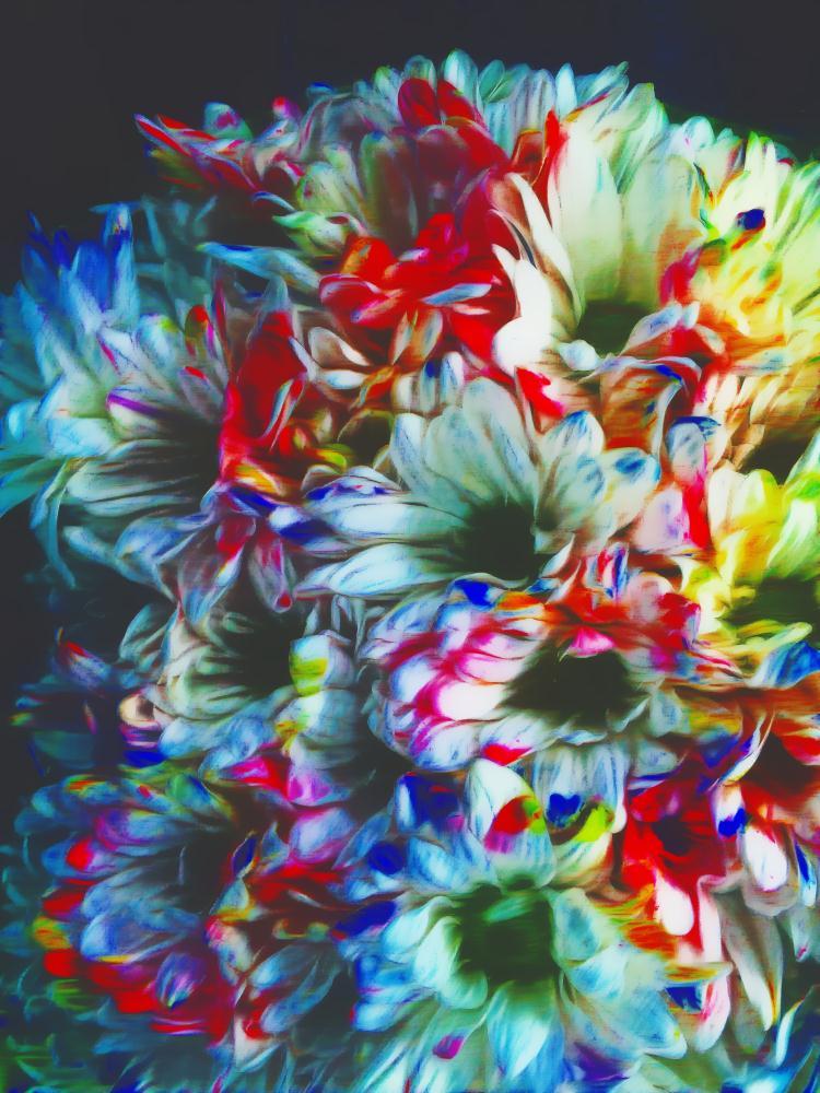 ColoredFlowers | BayouFoto