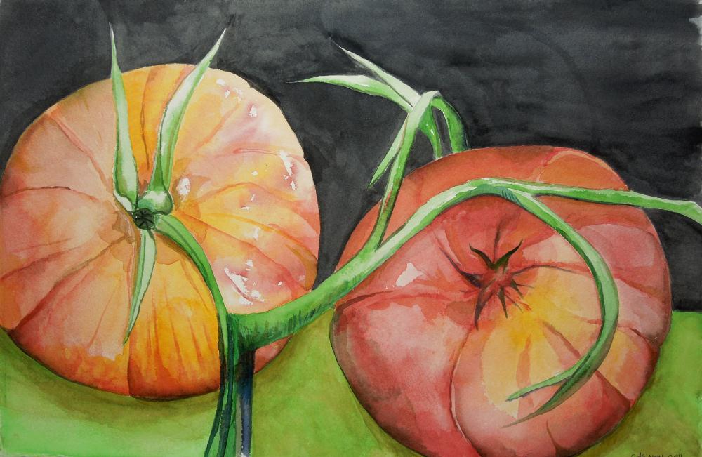 Tomatoes | Carol Johnson - art