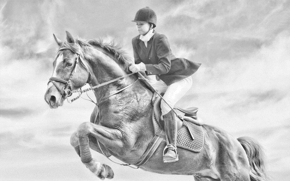 Horse riding |