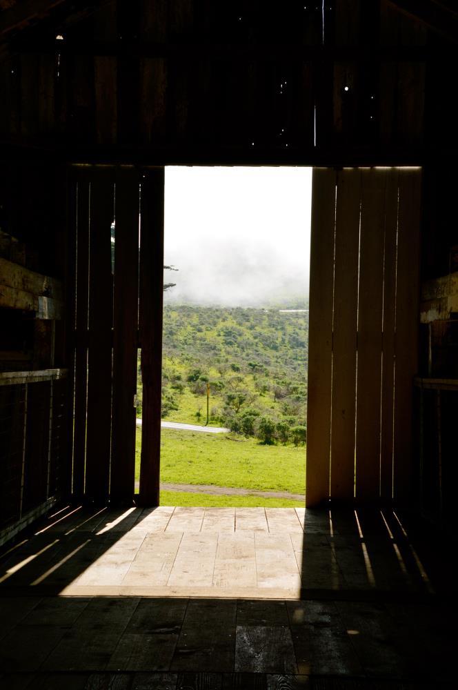 Barn Door | My Art's Desire