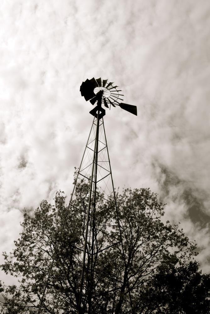 Windmill | My Art's Desire