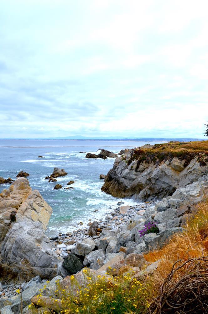 A Day in Monterey | My Art's Desire
