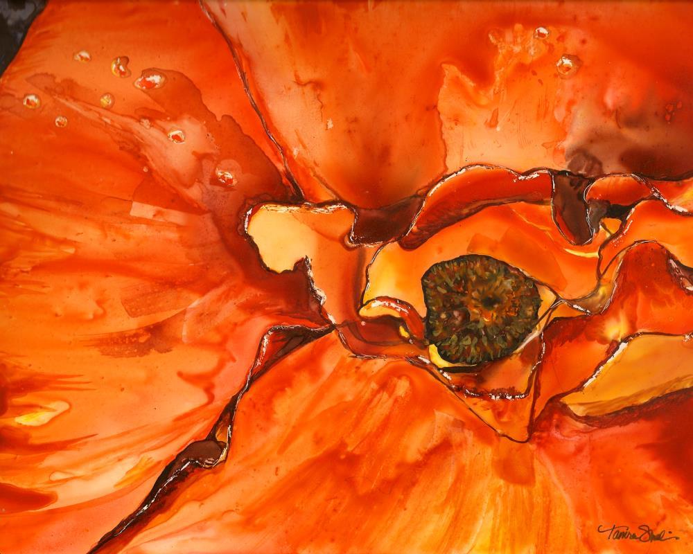 One Hot Poppy! | Tamra Sheline, Artist