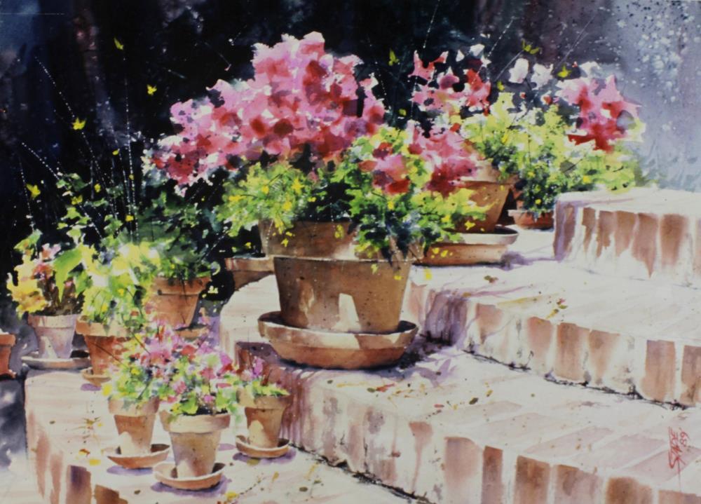 Geraniums | tom's paintings