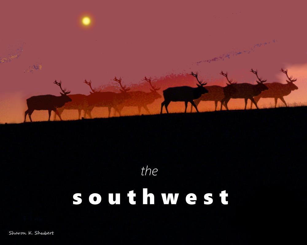 The Southwest | Sharon K. Shubert, Artist