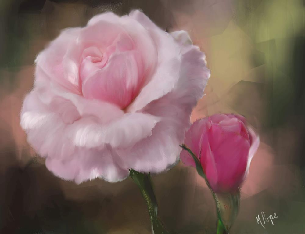 Pink Rose with Bud | Spare Moments Art