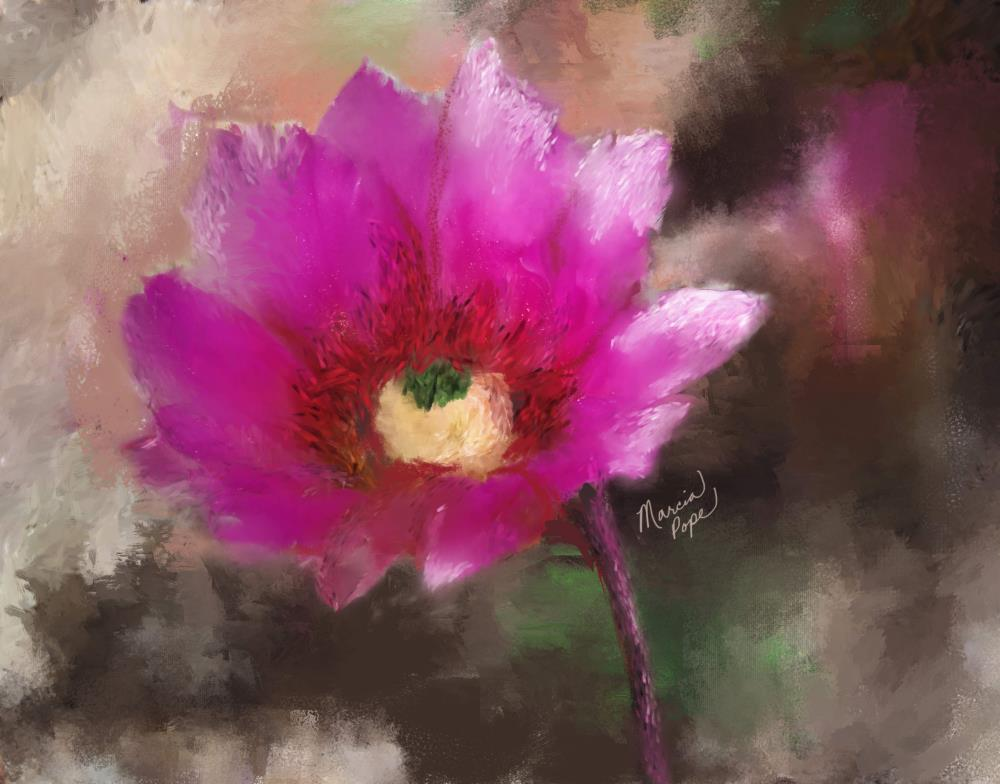 Arizona Flower | Spare Moments Art