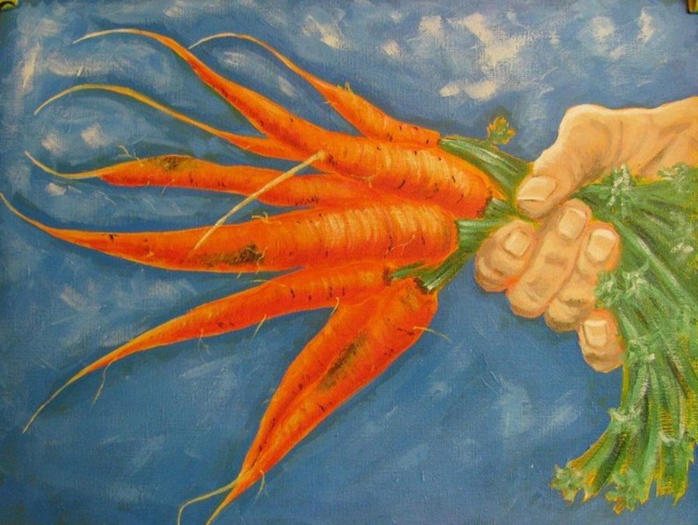 Carrots | beanie's brush